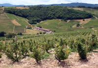 Ancora grandine sul Beaujolais