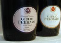 Il caso Giulio Ferrari 2008