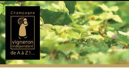 Champagne: i Vignerons Indépendants tagliano i ponti